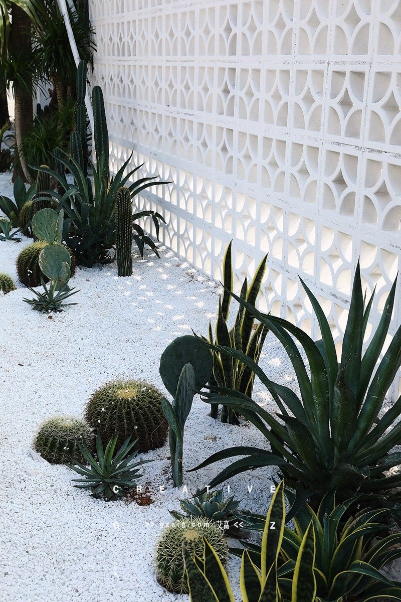 棕榈泉别墅外景